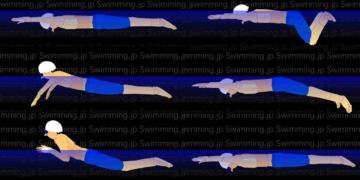 平泳ぎ 泳ぎ方のコツ(キックとプルのタイミング)
