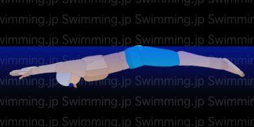 水泳 バタフライの泳ぎ方 進むポイントはストロークと◯◯◯◯!