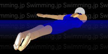 水泳 バタフライの泳ぎ方 ストロークの仕方とストロークのタイミング