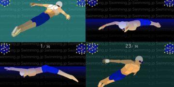 水泳 トップスイマーのバタフライ 多角度からの3Dアニメーション